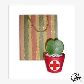Подарки на день медика для коллег 179